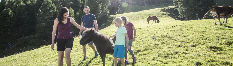 Wanderung Familie in Hochoetz
